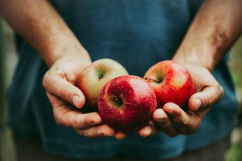 Handen vol appels