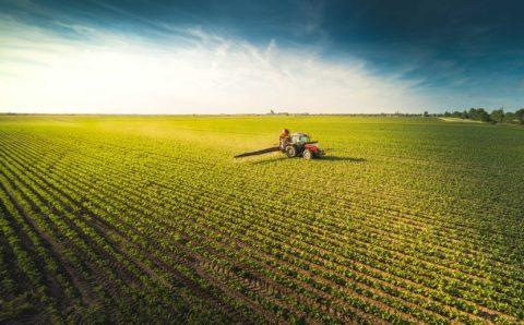 werkgever in de landbouw