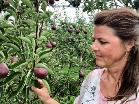Karin Rommers in boomgaard