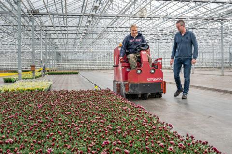 Werkzaamheden bij plantenkwekerij