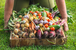 Diverse groenten in krat